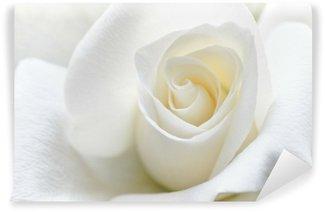 Fotomural Estándar Rosa blanca suave