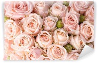 Fotomural Estándar Rosas de color rosa brillante de fondo