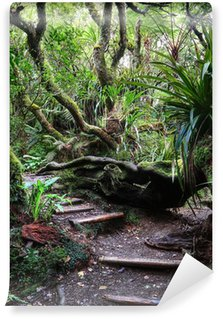 Fotomural Estándar Sentier en forêt tropicale, La Reunión.