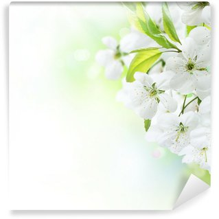 Fotomural Estándar Spring Flowers cereza frontera. Huerta