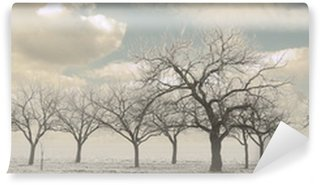 Fotomural Estándar Trees in winter