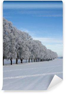 Fotomural Estándar Winter Allee
