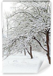 Fotomural Estándar Winter garden
