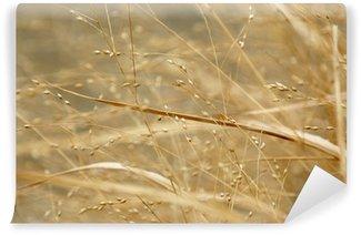 Fotomural Estándar Winter Grass