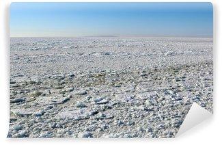 Fotomural Estándar Winter mar