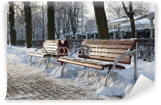 Fotomural Estándar Winter Park
