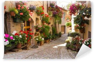 Vinyl-Fototapete Alley mit Blumen, Spello