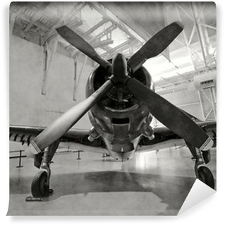 Vinyl-Fototapete Altes Flugzeug in einem Hangar