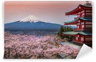 Vinyl-Fototapete Aussicht auf den Berg Fuji