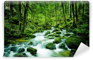 Vinyl-Fototapete Bach im Wald