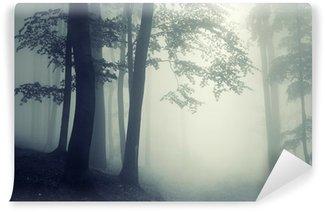 Vinyl-Fototapete Bäume im Gegenlicht in einem dunklen Wald