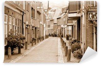 Vinyl-Fototapete Blick auf kleine, gemütliche Seitenstraße in Haarlem in den bewölkten Frühlingstag