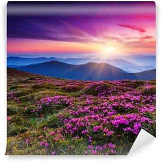 Vinyl Fototapete Blume