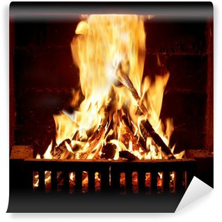 Fototapete Kaminfeuer poster vektor feuer flamme kreis pixers wir leben um zu verändern