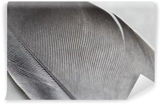 Vinyl-Fototapete Close-up von einer Feder