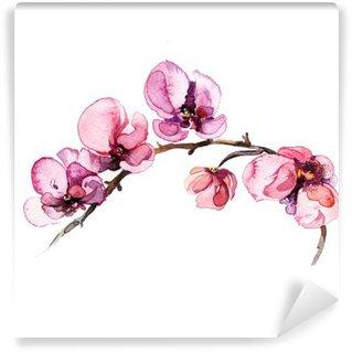 Vinyl-Fototapete Das Aquarell Blumen Orchidee auf dem weißen Hintergrund isoliert