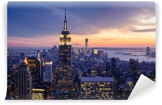 Vinyl-Fototapete Die stadt new york