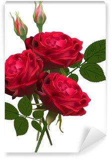 Vinyl-Fototapete Drei rote Rosen Haufen isoliert auf weiß