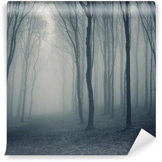 Vinyl-Fototapete Elegant Wald mit Nebel