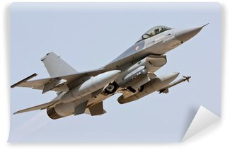 Vinyl-Fototapete F-16 - Take Off