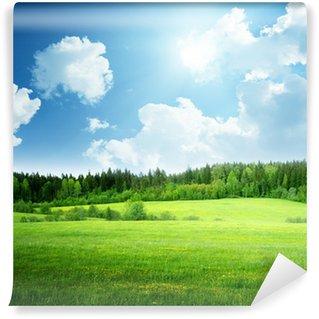 Vinyl Fototapete Feld von Gras und perfekte Himmel