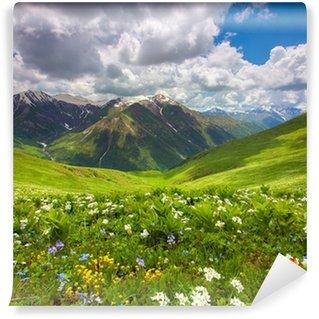 Vinyl Fototapete Felder von Blumen in den Bergen. Georgien, Swanetien.