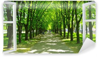 Vinyl-Fototapete Fenster geöffnet, um den schönen Park mit vielen grünen Bäumen