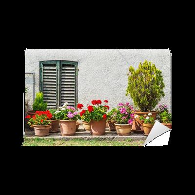 Fototapete fenster und t ren in einem alten haus mit - Fenster und turen nachtraglich sichern ...