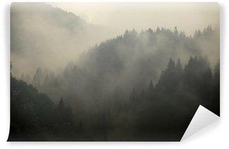 Vinyl-Fototapete Foggy Wald