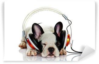 Vinyl-Fototapete Französisch Bulldog mit Kopfhörer isoliert auf weißem Hintergrund