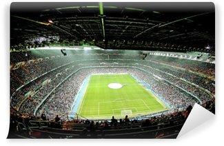 Vinyl-Fototapete Fuß ball-Stadion