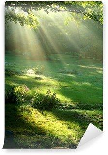 Vinyl-Fototapete Gift of Light
