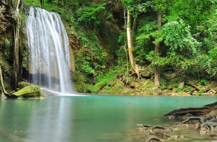 Fototapete tropischer regenwald  Vinyl-Fototapete Grüner Wasserfall im tropischen Regenwald ...