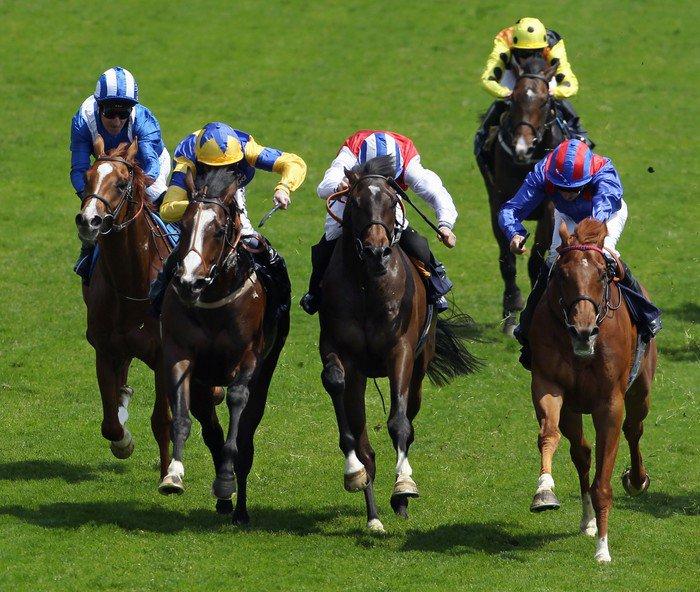 Vinyl-Fototapete Horse Racing 4 - Einzelsportarten