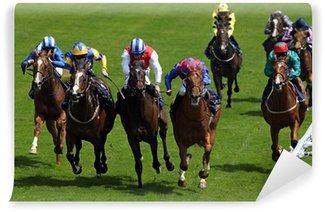 Vinyl-Fototapete Horse Racing 5