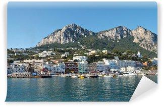 Vinyl-Fototapete Küstenstadt auf einer italienischen Insel