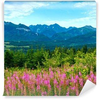 Vinyl-Fototapete Landschaft in den Bergen am Sommermorgen