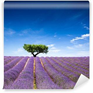 Vinyl-Fototapete Lavande Provence Frankreich / Lavendelfeld in der Provence, Frankreich
