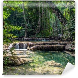 Vinyl-Fototapete Lianen im Regenwald. Erawan National Park in Thailand