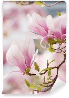 Vinyl Fototapete Magnolia Blumen im Frühling