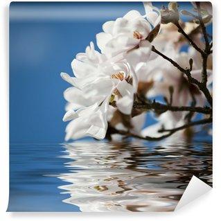 Vinyl Fototapete Magnolia Blumen im Wasser