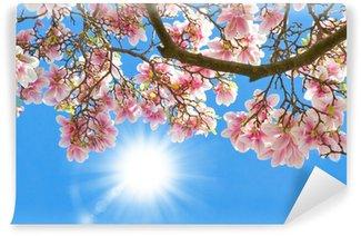 Vinyl Fototapete Magnolia in der Sonne