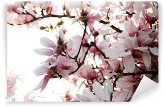 Vinyl Fototapete Magnolienbaum