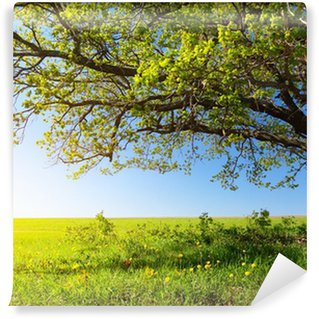 Vinyl-Fototapete Majestätischer Baum