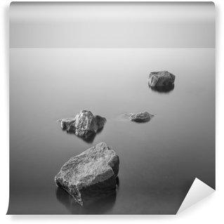 Vinyl-Fototapete Minimalist neblige Landschaft. Schwarz und weiß.