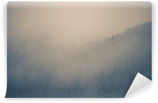 Vinyl-Fototapete Misty Forest Hintergrund