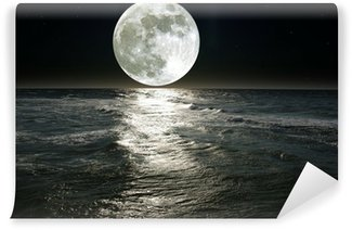 Vinyl-Fototapete Mond