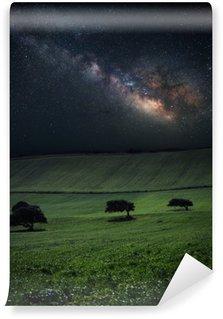 Vinyl-Fototapete Nacht mit erstaunlichen Milchstraße über der grünen Wiese mit drei Bäume