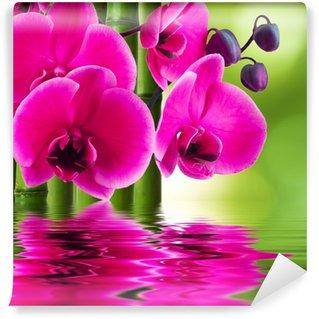 Vinyl-Fototapete Orchidee Blume mit Bambus und Spiegelbild im Wasser