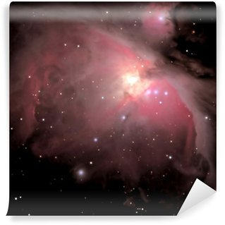 Vinyl-Fototapete Orionnebel M42